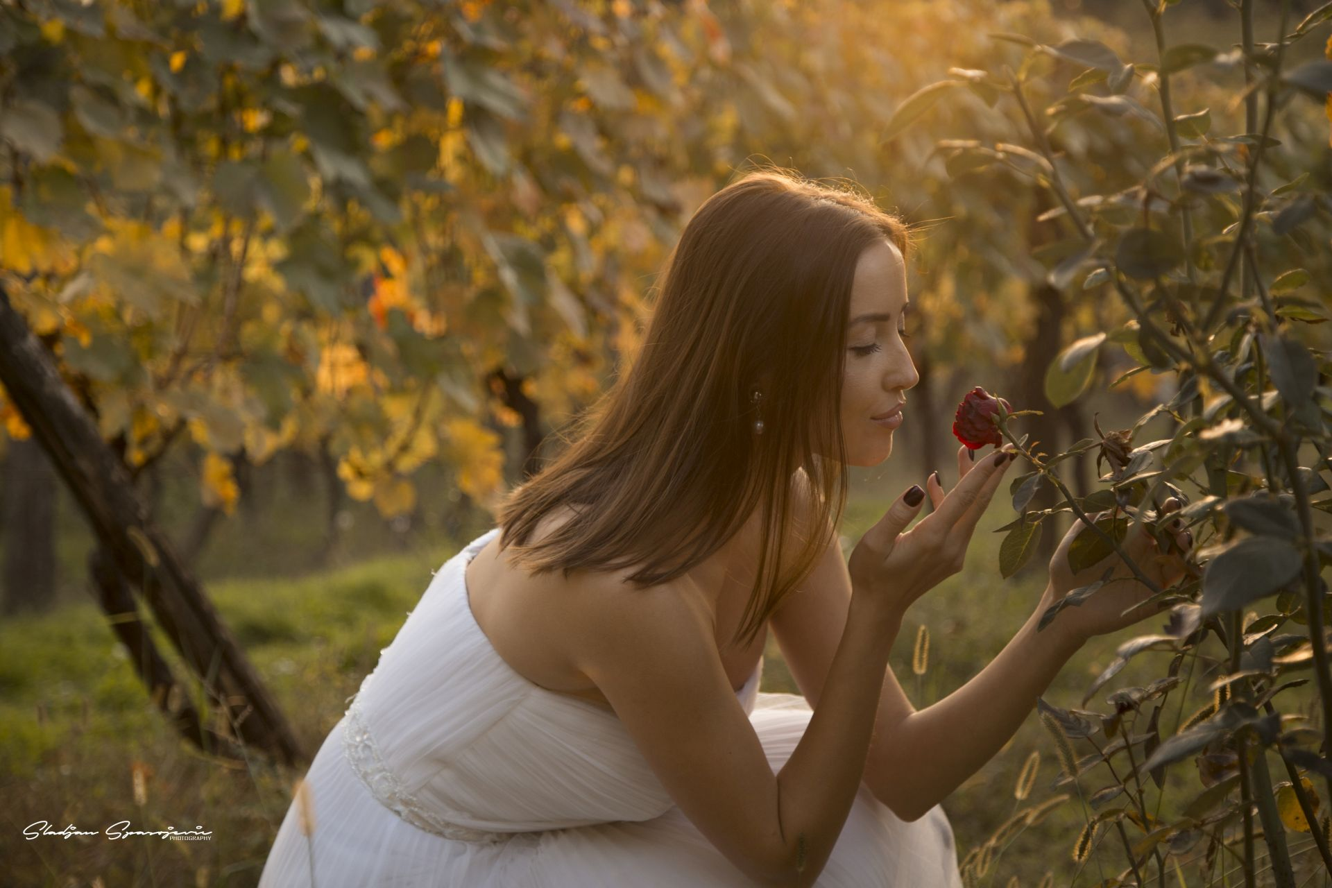 Sladjan Spasojevic Photography